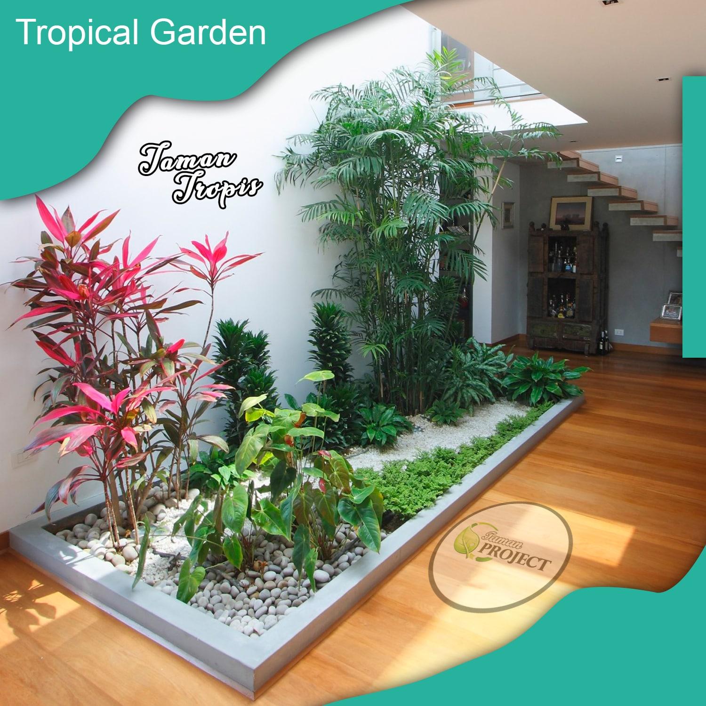 Tukang Taman - Konsep Taman Tropis - Paket Pembuatan Taman - Ukuran Lahan 5 Meter